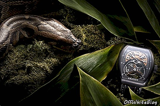 Fookus: Franck Muller Vanguard Collection